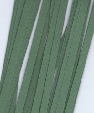 Quilling paper 6mm - olive green G10-6