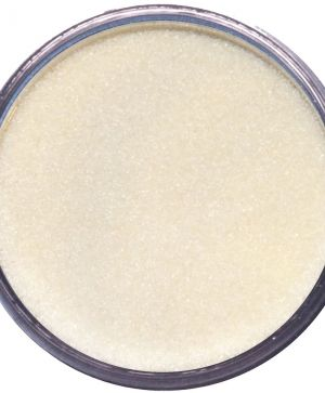 Embossing powder 15ml - Clear Semi Dull WA03R