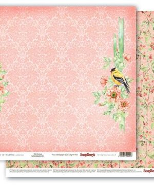 "Double-sided paper 12""x12"" - The Art of Nature Birdsong SCB220609101"