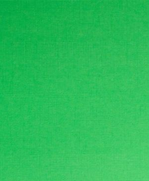 "Sandable textured cardstock 12""x12"", 1 sheet - Green SCB201213"