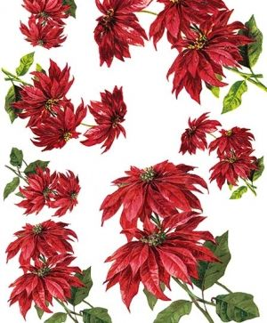 Decoupage Rice Paper A4 - Poinsettia ITD-R450