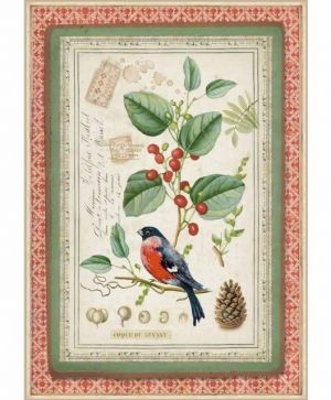 Decoupage Rice Paper A4 - Winter Botanic little bird on holly DFSA4326