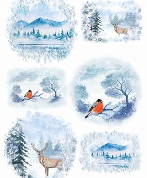 Decoupage Rice Paper A4 - winter views, birds - ITD-R1485