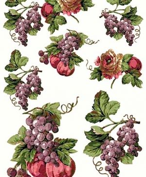 Decoupage Rice Paper A4 - grapes ITD-R183