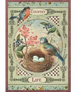 Decoupage Rice Paper A4 - Country life Birds DFSA4352