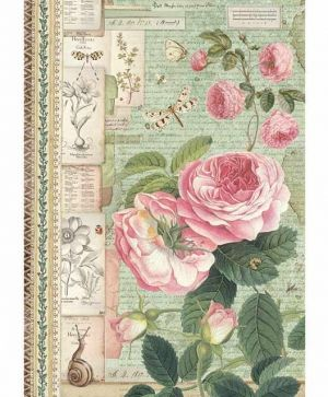 Decoupage Rice Paper A4 - Botanic English Roses with snail DFSA4359