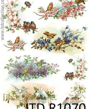 Decoupage Rice Paper A4 - birds, flowers, spring ITD-R1070