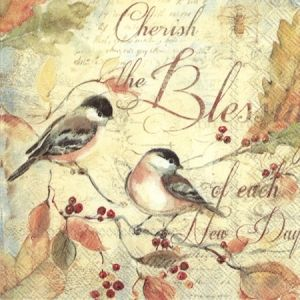 Decoupage napkins 33x33cm, 20 pcs. - CHERISH THE BLESSINGS L798200