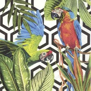 Decoupage napkins 33x33cm, 20 pcs. - TROPICAL PARROTS L845707