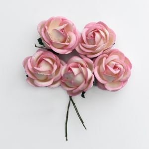 Paper Blossoms 5 pcs - Pink-ivory Chelsea roses MKX-719