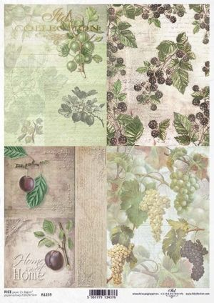 Decoupage Rice Paper А4 - Grapes, gooseberries, plums, blackberries ITD-R1259