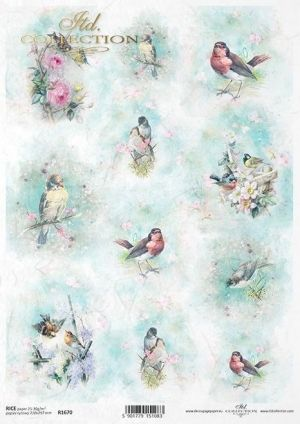 Decoupage Rice Paper А4 - Spring Shabby Chic ITD-R1670